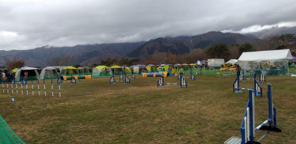 アジリティー競技会 | 犬のしつけや問題行動でお悩みなら愛知県ドッグスルーム